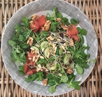 sprouted lentils salad